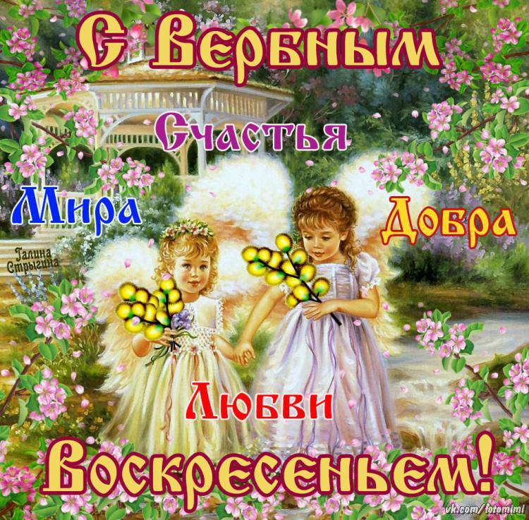 Картинка пожелание в Вербное Воскресенья, Поздравления с Вербным Воскресеньем