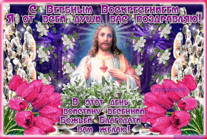 Вербное Воскресенье! Душевная открытка, Поздравления с Вербным Воскресеньем