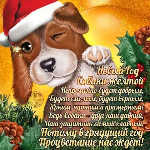 Новый год собаки желтой, С Новым годом 2019
