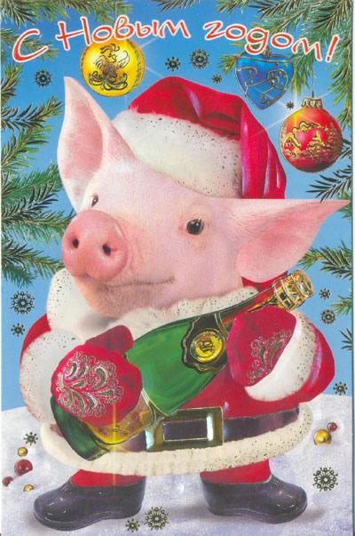 Прикольная новогодняя открытка в год Свиньи 2019, С Новым годом 2019