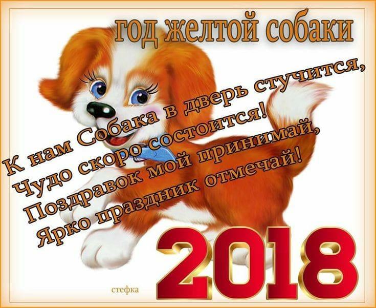 Год желтой собаки, С Новым годом 2018