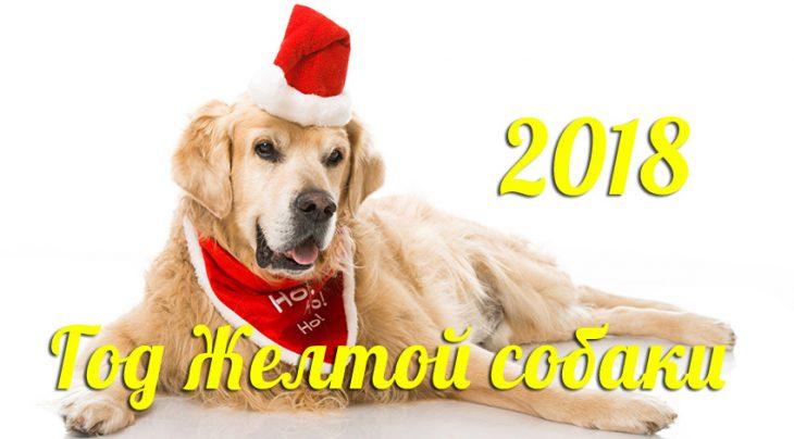 С Новым Годом желтой собаки, С Новым годом 2018