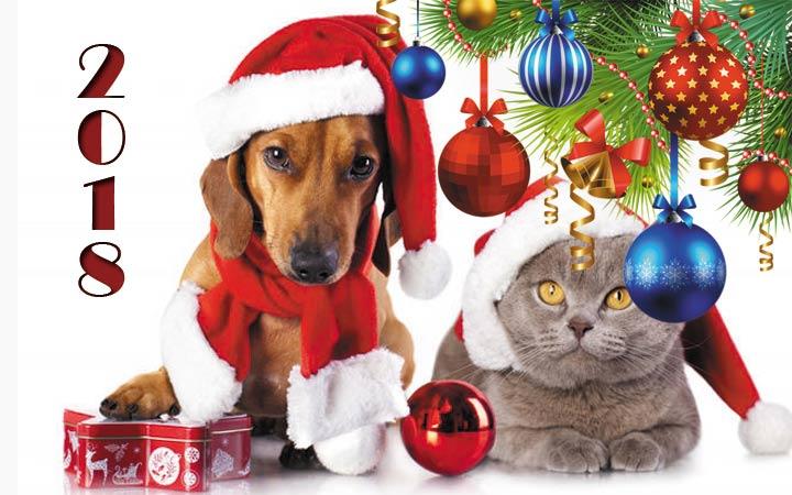 Открытка в год Собаки, С Новым годом 2019
