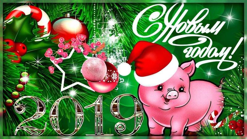 Открытка год Свиньи 2019, С Новым годом 2019