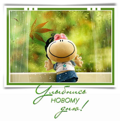 Улыбнись новому дню!, Пожелания на день