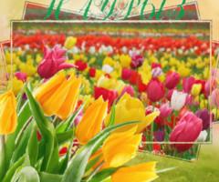 Поздравительная открытка с праздником Навруз